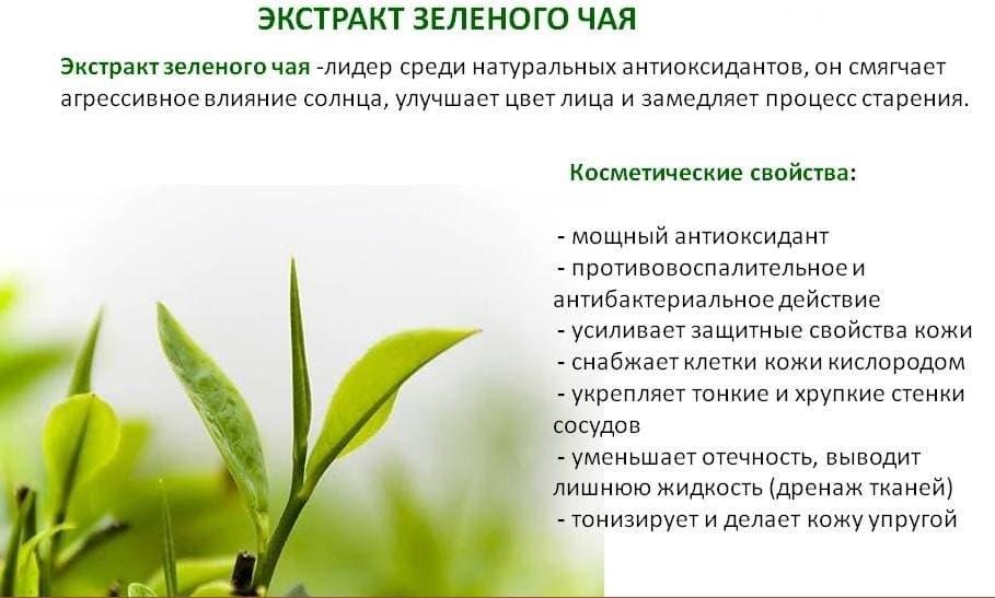 Экстракт зеленого чая часто включается в состав популярных жиросжигателей.