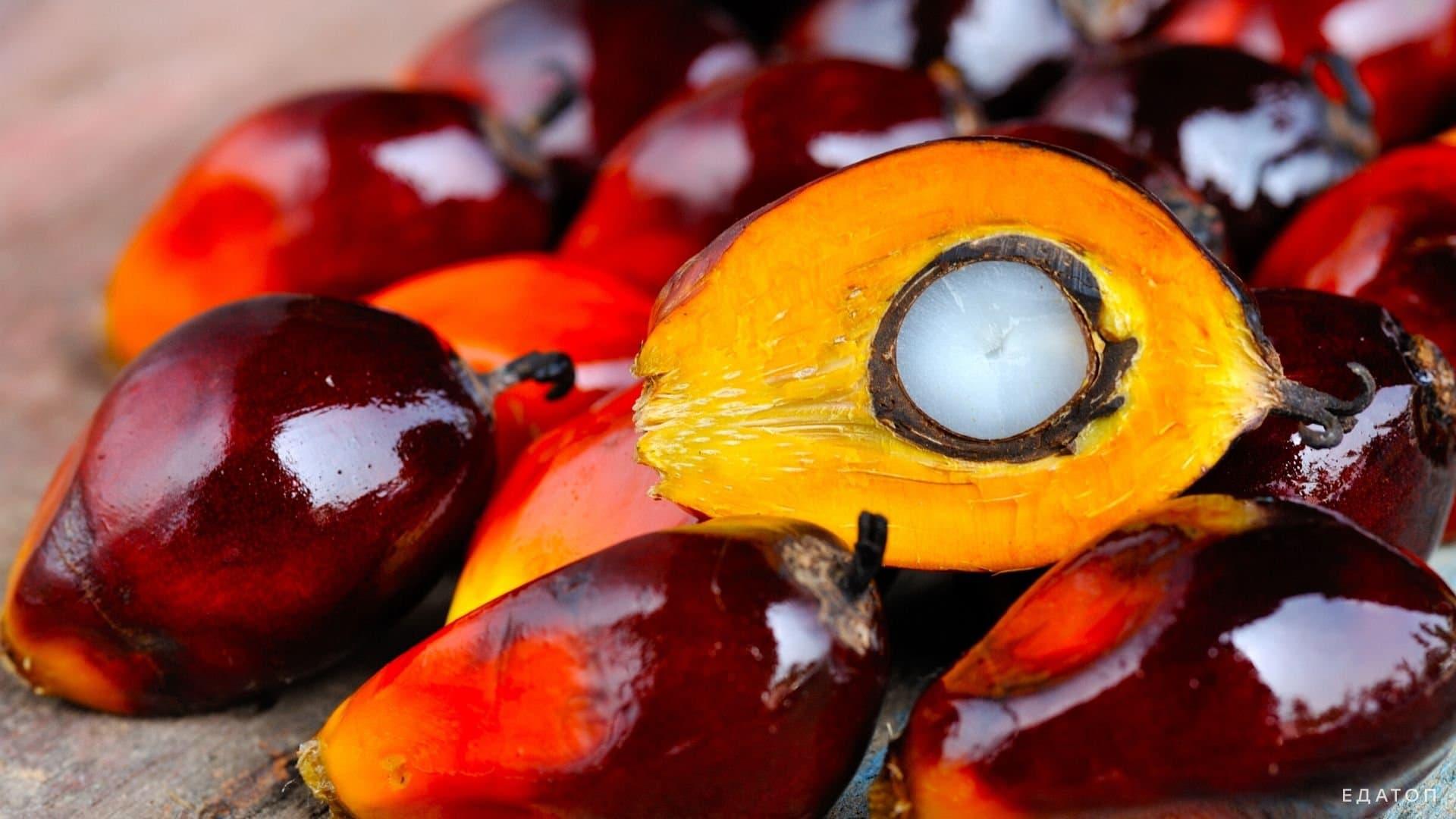 Пальмовое масло снижает уровень витамина Д в крови.
