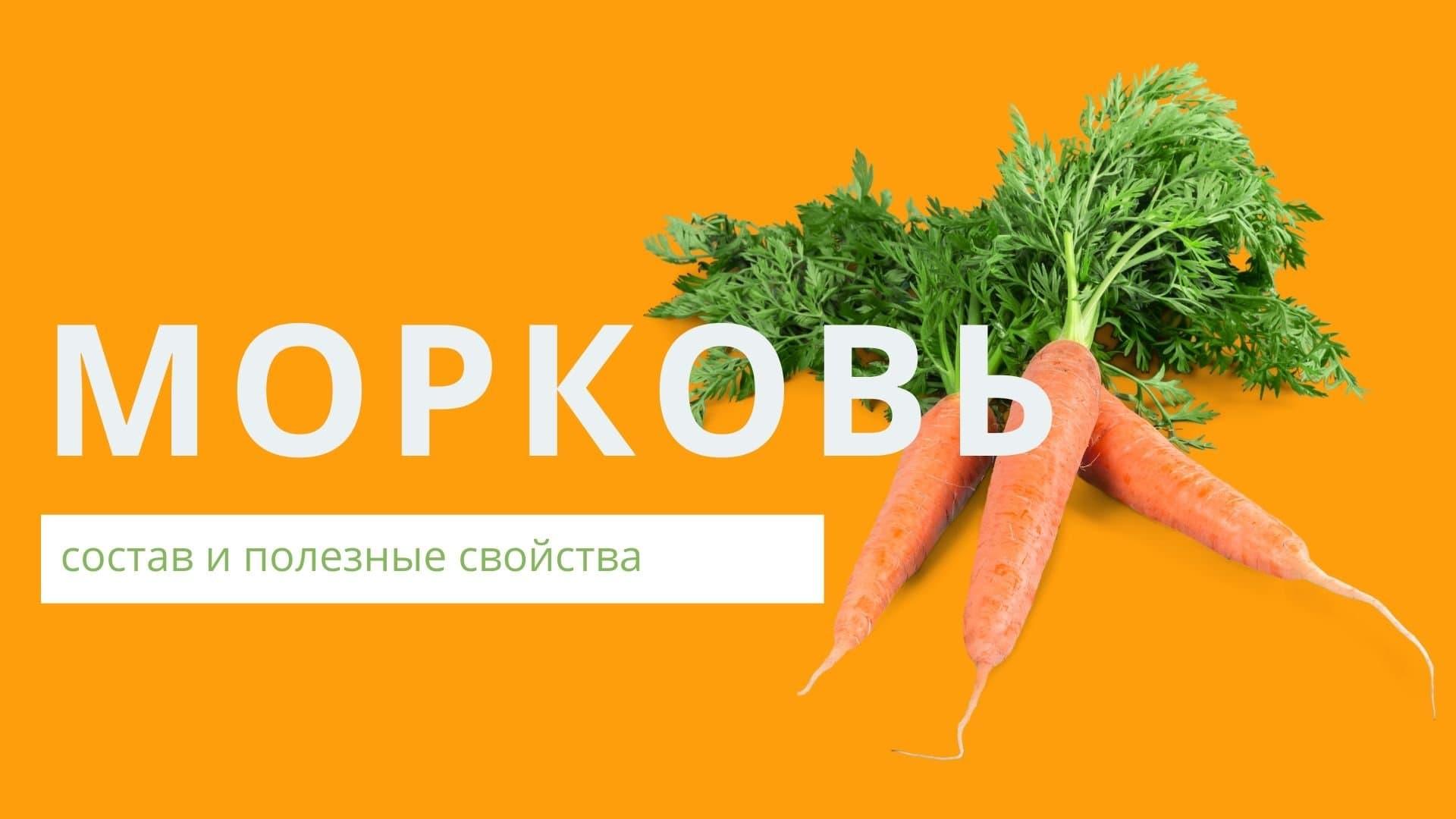 Морковь: состав и полезные свойства, применение в медицине, косметологии, противопоказания и вред овоща