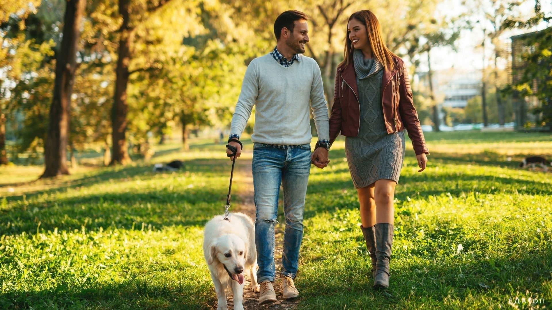 Пешие прогулки в осеннем парке благотворно сказываются на здоровье.