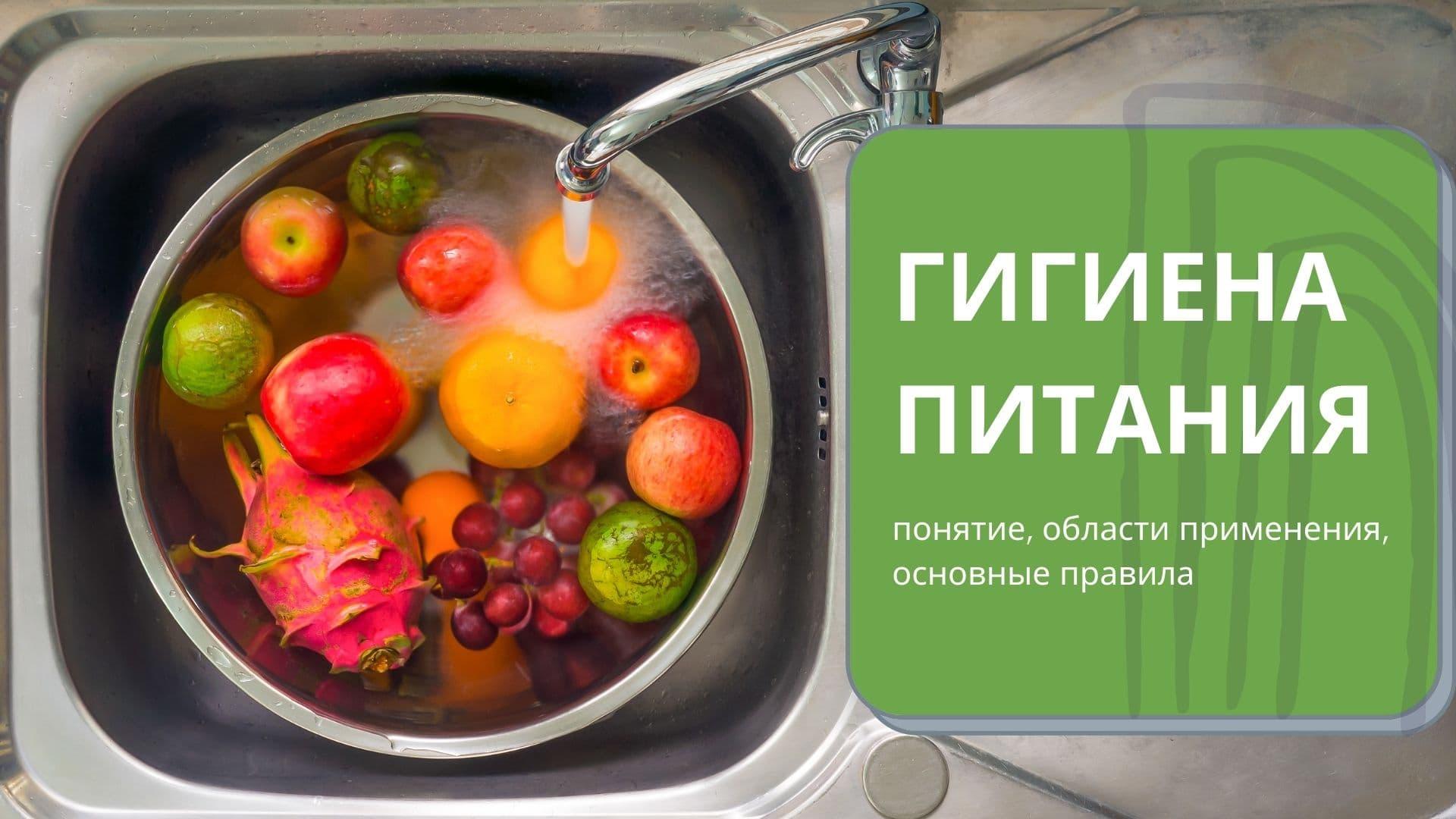 Гигиена питания: понятие, области применения, основные правила