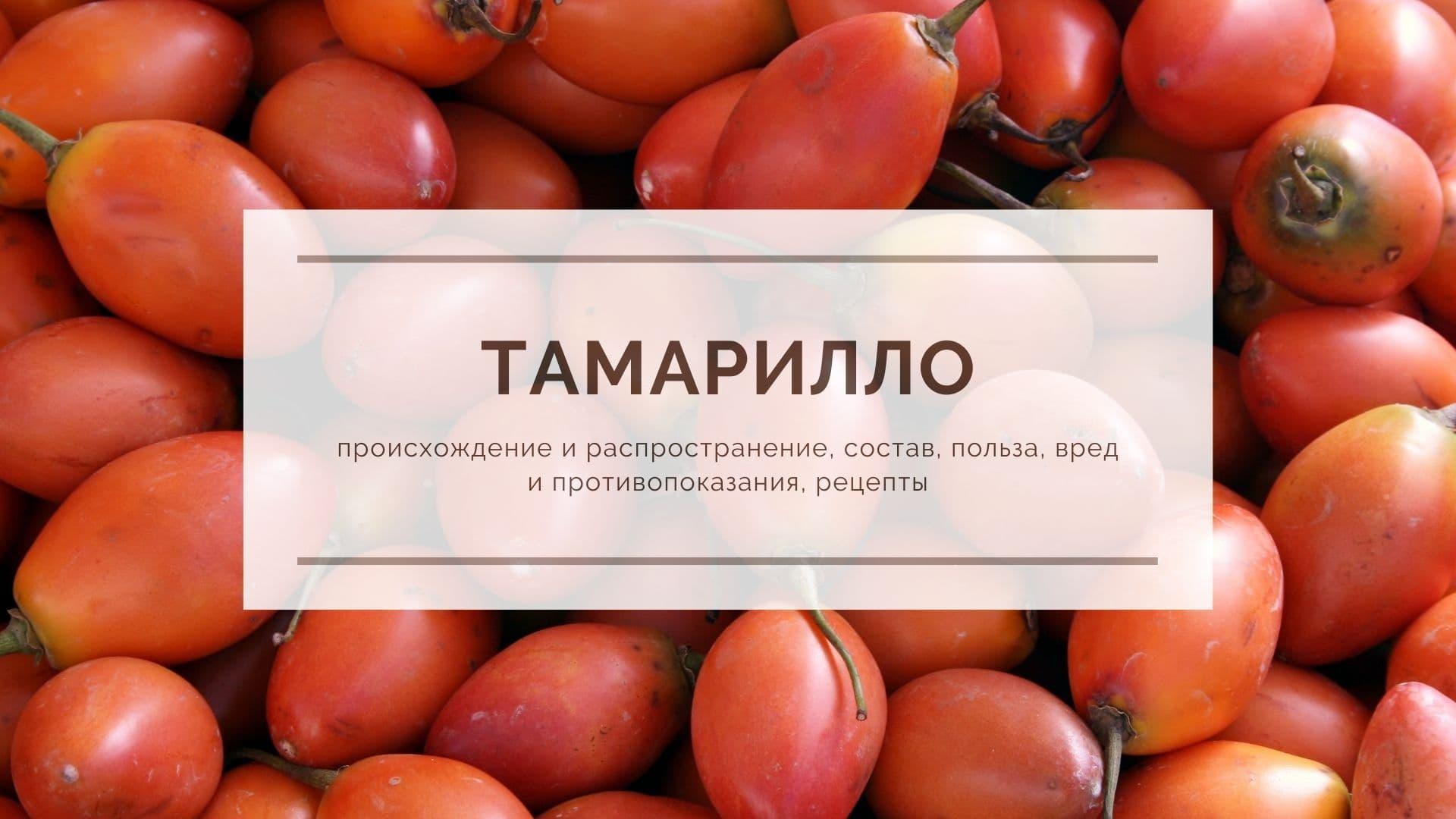 Тамарилло: происхождение и распространение, состав, польза, вред и противопоказания, рецепты