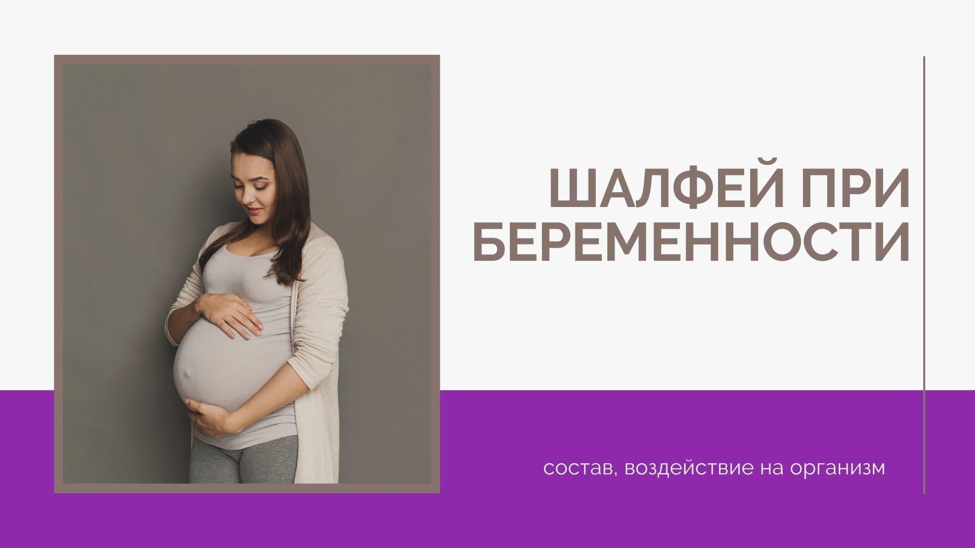 Шалфей при беременности: состав, воздействие на организм