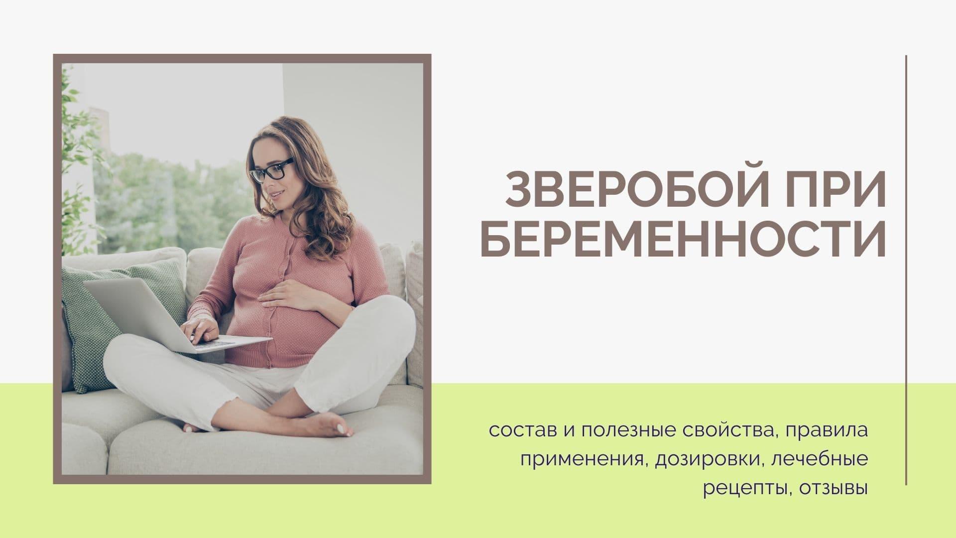 Зверобой при беременности: свойства, показания и противопоказания, меры предосторожности