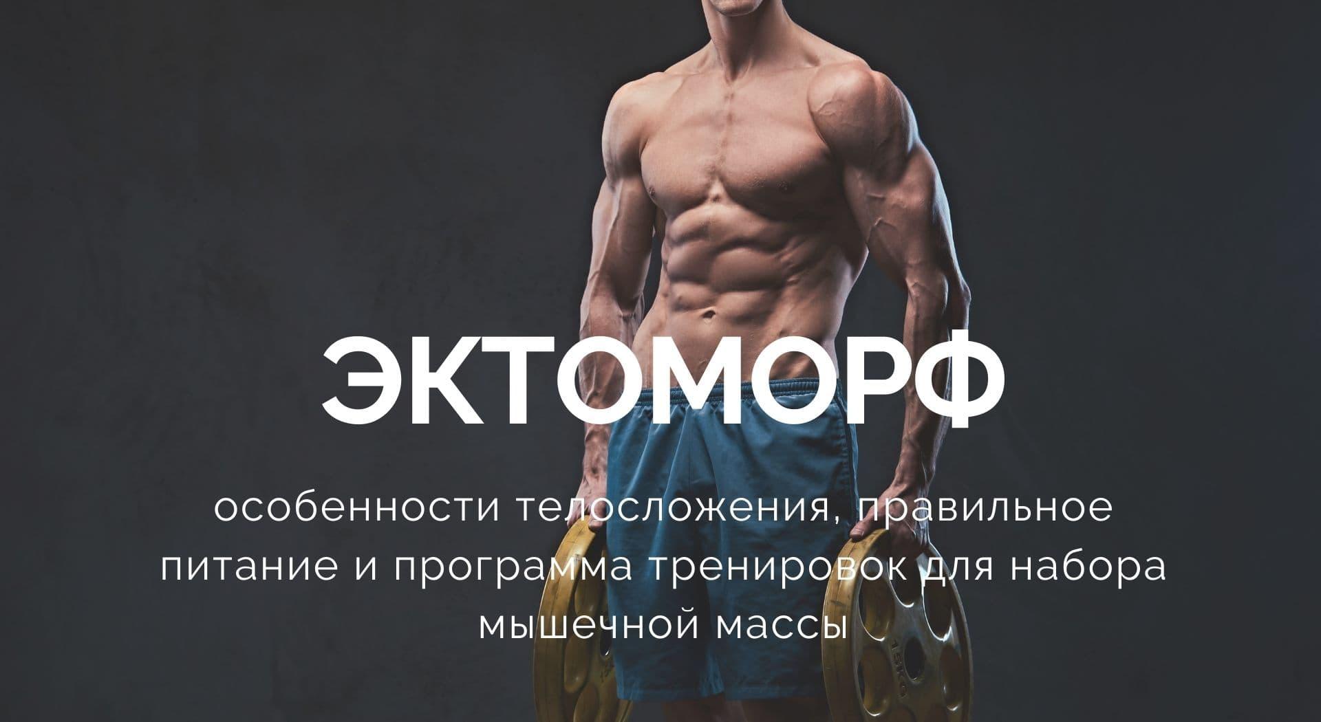 Эктоморф: особенности телосложения, правильное питание и программа тренировок для набора мышечной массы