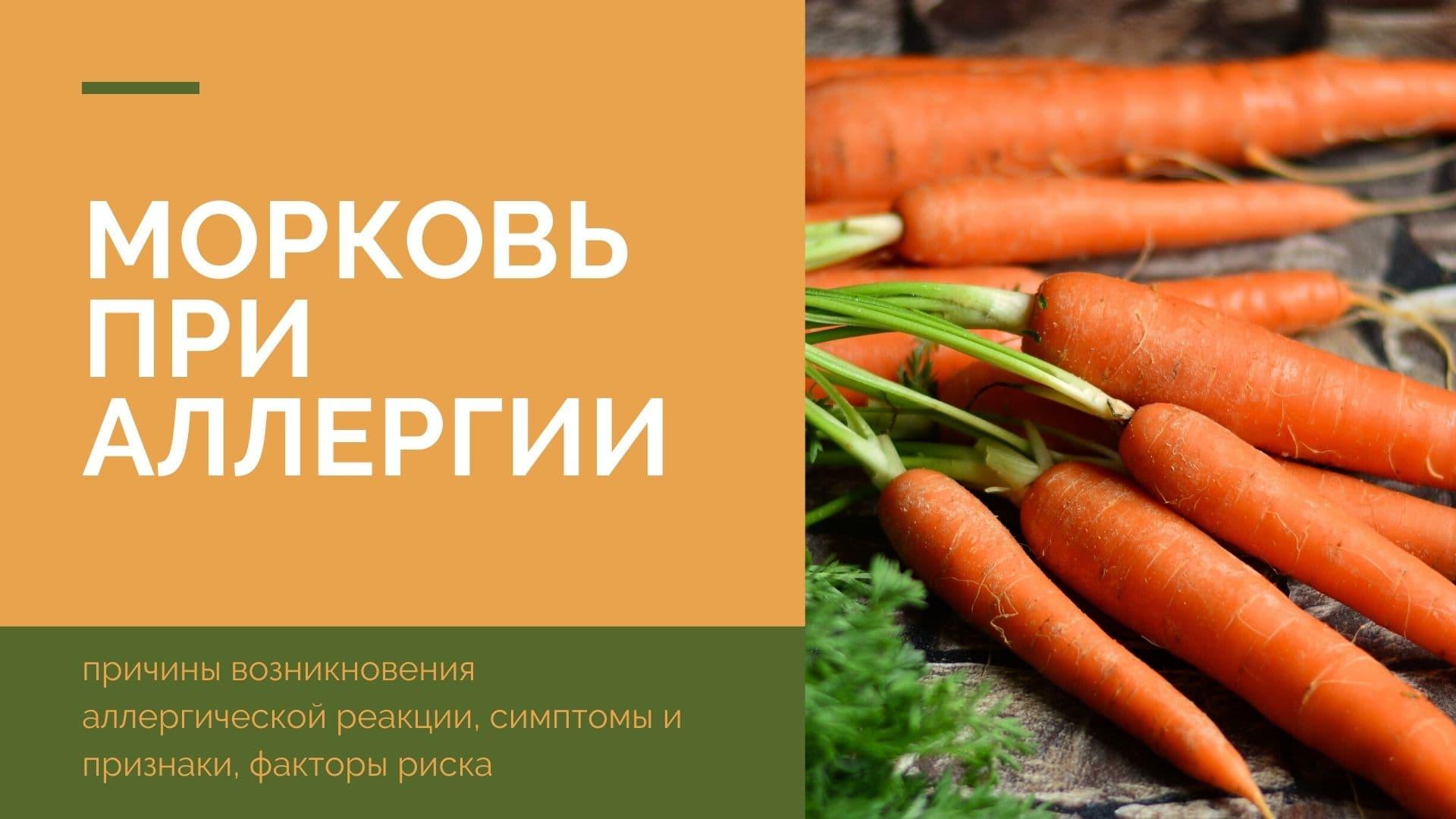 Морковь при аллергии: причины возникновения аллергической реакции, симптомы и признаки, факторы риска