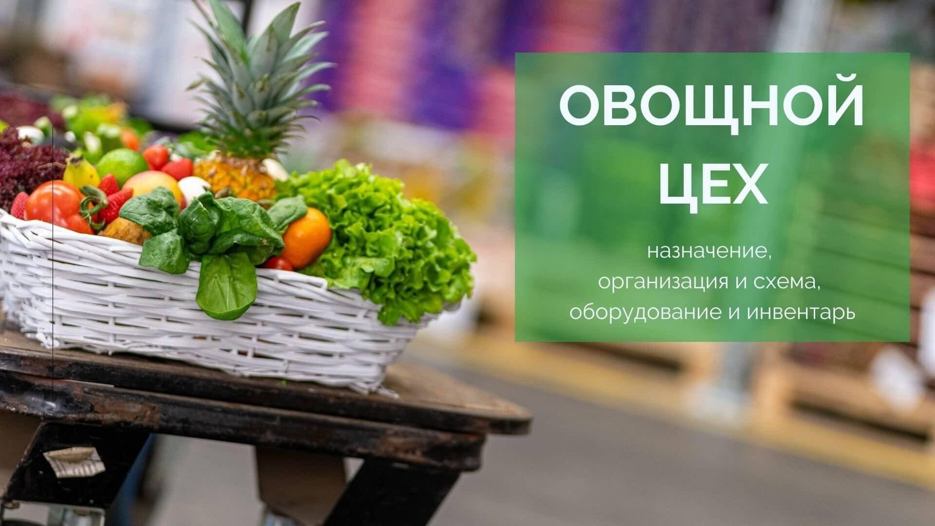 Овощной цех: назначение, организация и схема, оборудование и инвентарь